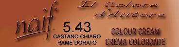 NAIF N°5.43 CASTANO CHIARO RAME DORATO